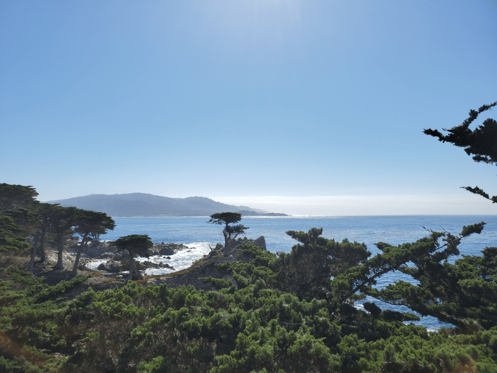 The Lone Cypress is one is of the most photographed trees in North America
